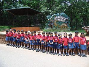 priprimary zoo (3)