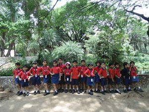 priprimary zoo (4)