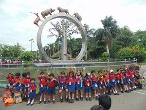 priprimary zoo (6)