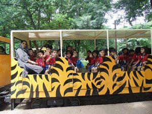 priprimary zoo (8)