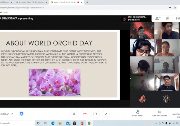 World Orchid Day-7A